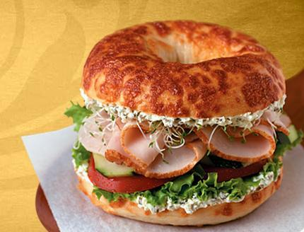 Tasty Turkey at Einstein Bros. Bagels