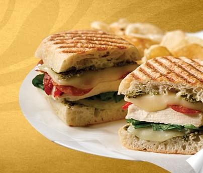 Italian Chicken Panini at Einstein Bros. Bagels