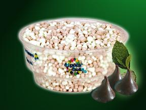 Mint Chocolate at Dippin' Dots