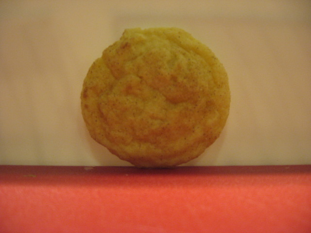 Snickerdoodle at Cookie Central