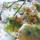 Best Salad EVER! - Little Gem Lettuce Salad with Grated Serena at NOPA