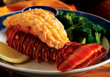 Rock Lobster Tail at Red Lobster