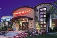 Exterior at Elephant Bar Restaurant