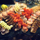 Seafood Platter - Cold Seafood at Q Steakhouse